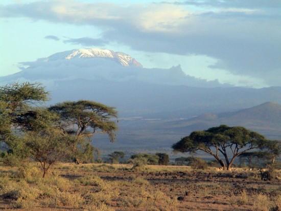Танзания - мир дикой природы и девственной красоты1