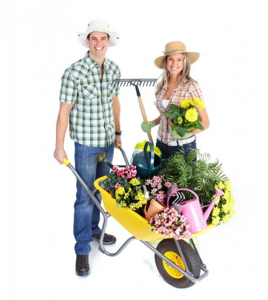 Садоводство - как один из способов раскрытия творческого потенциала 2
