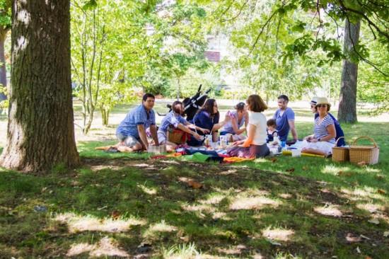 Как организовать хороший пикник?