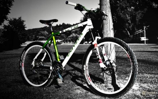 Начинающим вело любителям2